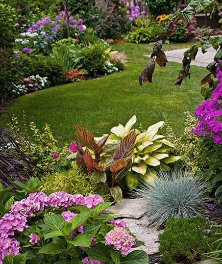 Desert Gold Landscape Garden Design
