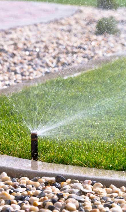 Desert Gold Landscape Sprinkler System Repairs