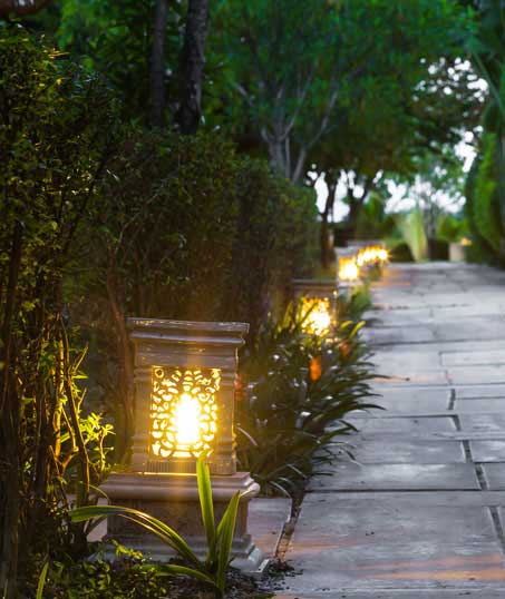 Desert Gold Landscape Residential Landscape Lighting